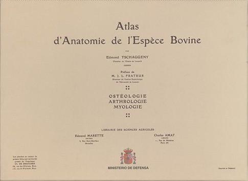 ATLAS D'ANATOMIE DE L'ESPÈCE BOVINE